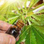 NEUTRISCI ENTERS INTO LOI WITH FALCON TECHNOLOGIES INC. dba ECOGROWTH STRATEGIES TO MANUFACTURE SUBLINGUAL CBD PRODUCTS