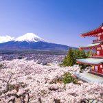 NEUTRISCI INTERNATIONAL INC. INITIAL ORDER SEES NEUTRISCI ENTER PROMISING JAPANESE CBD MARKET